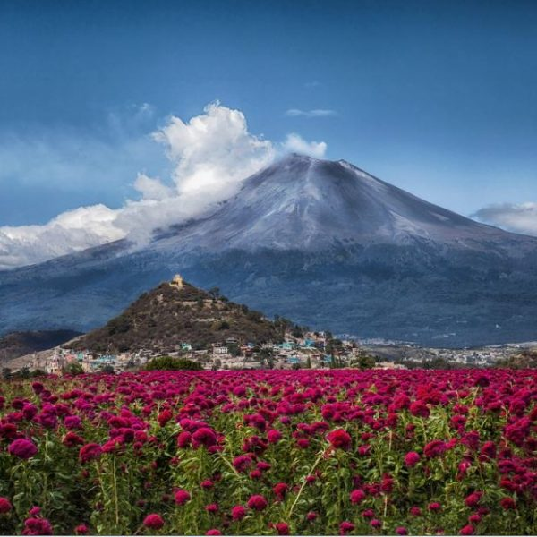4 superbes parcs nationaux pour découvrir la biodiversité du Mexique